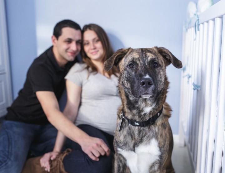 Séance grossesse de Caroline à domicile - Vitry sur Seine (Val de Marne)